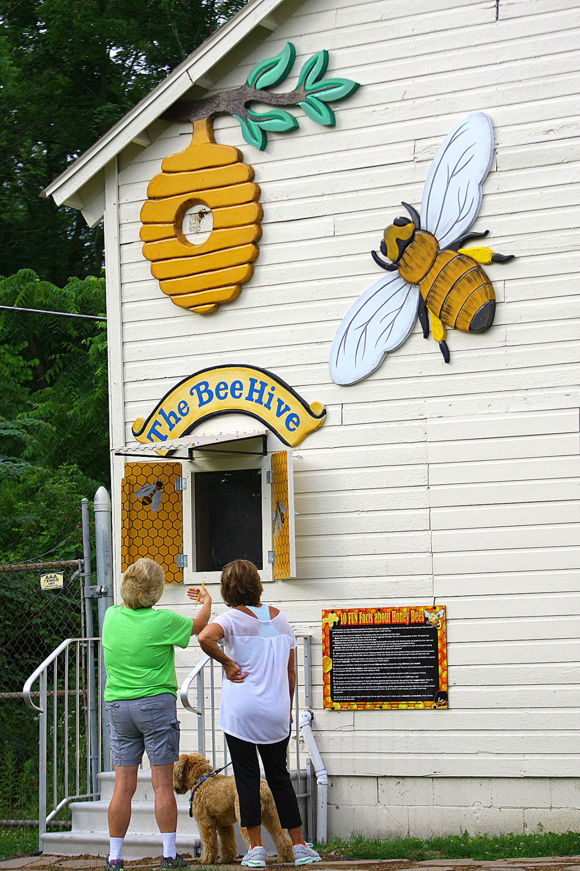 Honey bees made their home in a Mehlig Park building  Now