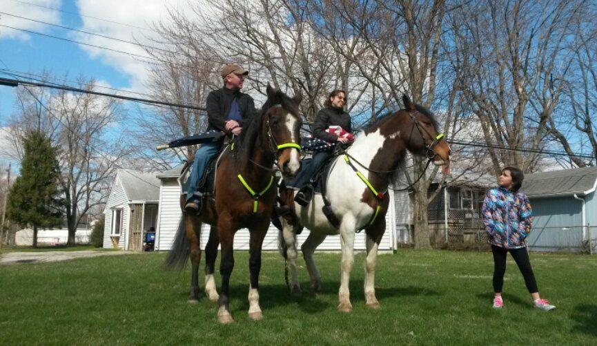 KPD horses