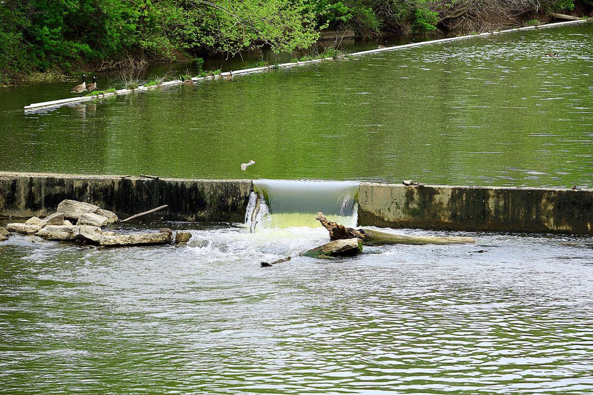 Dam on Wildcat Creek