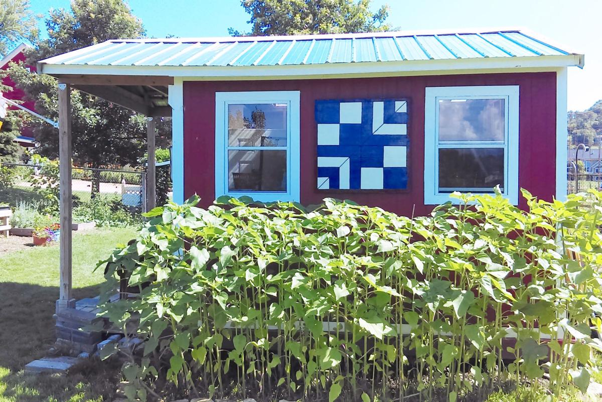 Barn quilts popping up at clearwater farm local for Garden shed quilting