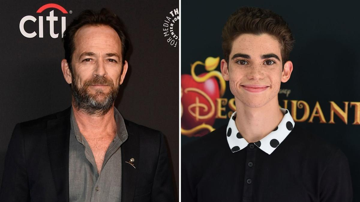 Luke Perry, Cameron Boyce & More Snubbed From 2020 Oscars 'In Memoriam'