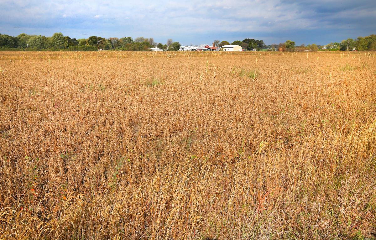 47-lot subdivision on Brice Prairie gets rezoning OK