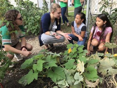 Hintgen school garden