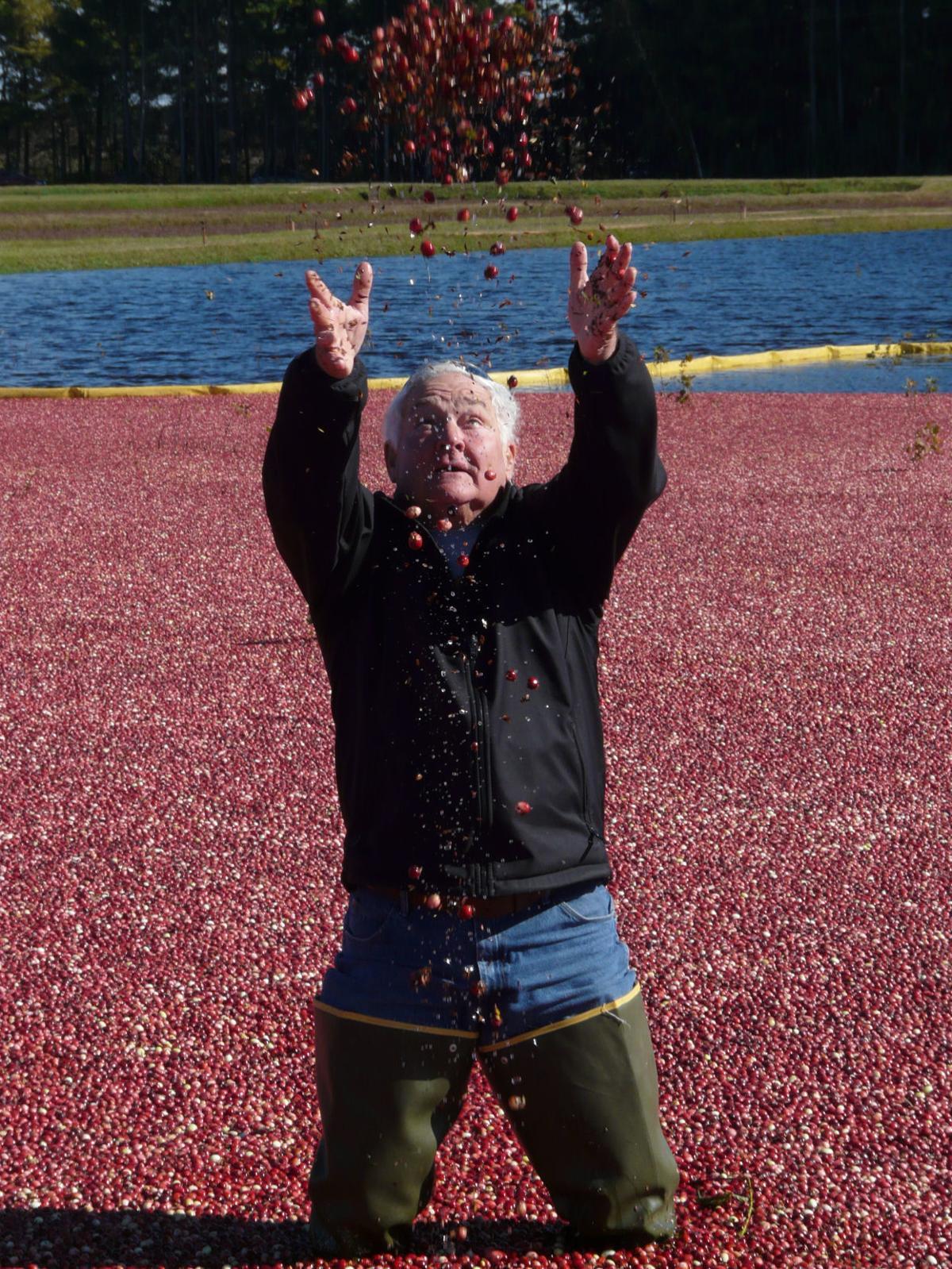 Berry toss