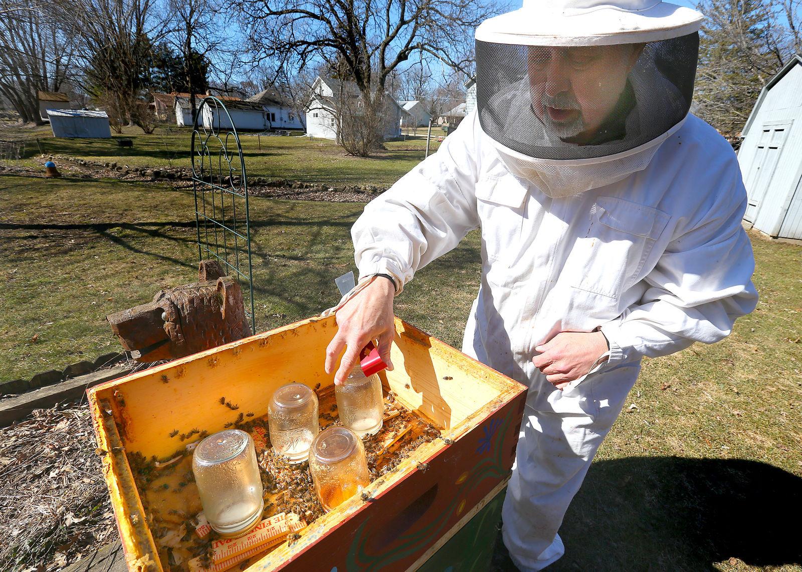 Merveilleux Bee Keeping