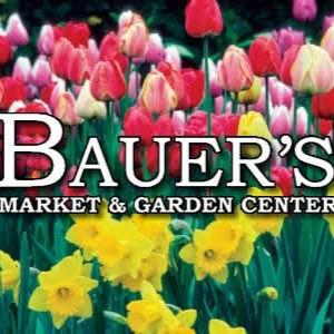 Bauer's
