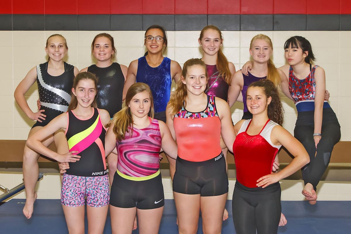 2017-2018 Westby Gymnastics Team