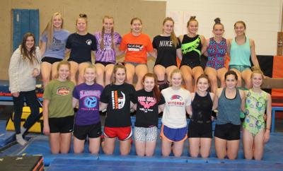Viroqua area cooperative gymnastics team 2019-2020
