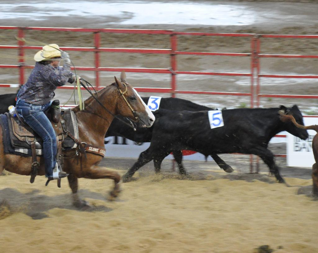 Monroe County Fair to host second annual ranch rodeo | News