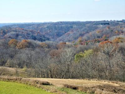 Ridgetop property