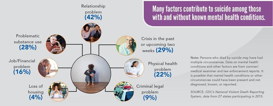 Suicide factors grafic