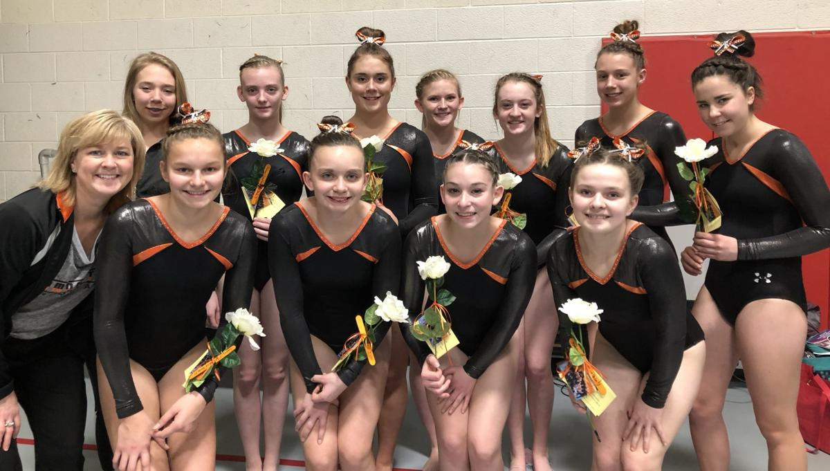 Viroqua co-op gymnastics team at state