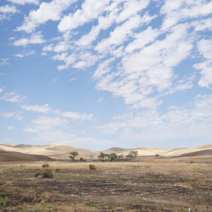 1841: Sonoma drought