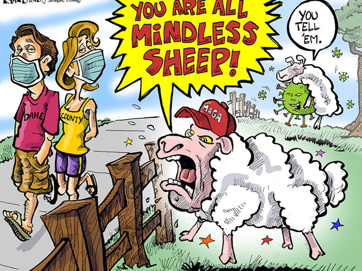 Hands on Wisconsin: Anti-maskers are the real sheep | Opinion |  lacrossetribune.com