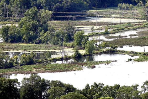 Hometown Icon: La Crosse River Marsh