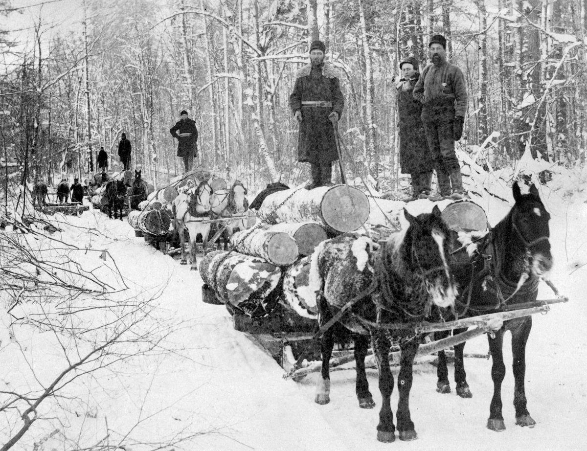 The Way it Was: 1890s logging crew