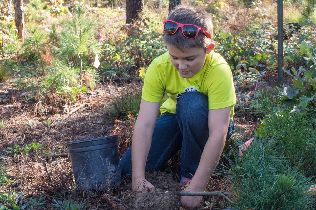 Uprooting an opportunity