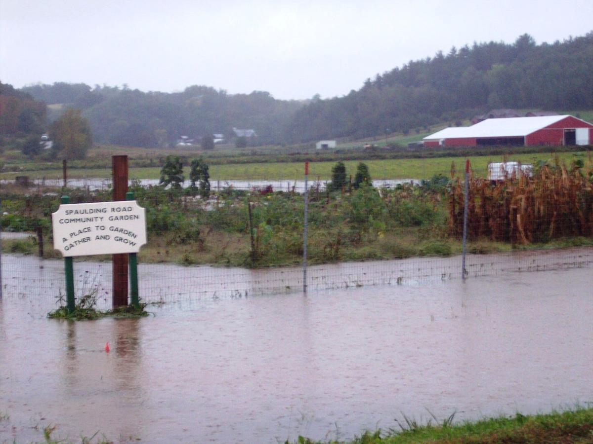 Group plans to alleviate drainage issues at Black River Falls community garden