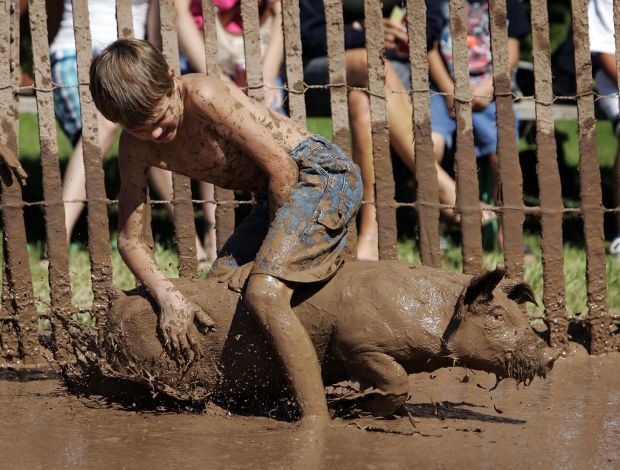 Buy Manufacturer Coupons >> Cops to monitor church's pig wrestling event
