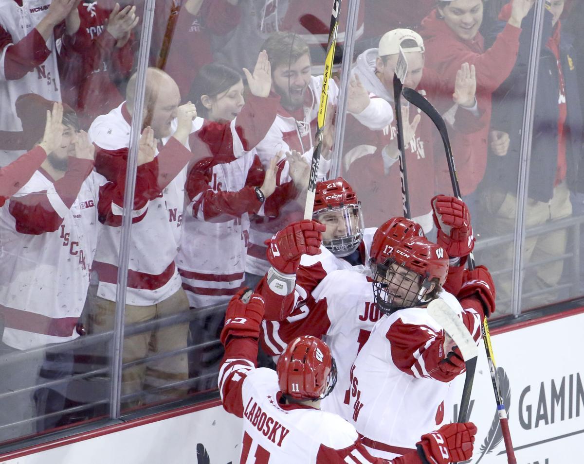 Wisconsin men's hockey crowd