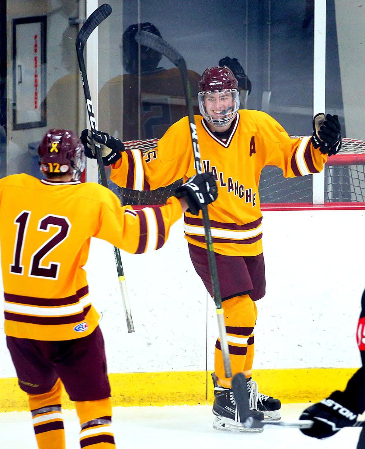 Avalanche La Crosse Hockey (MAIN)