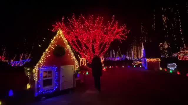5fcb92e91b0b8.image - Holiday Light Show Rotary Botanical Gardens December 22