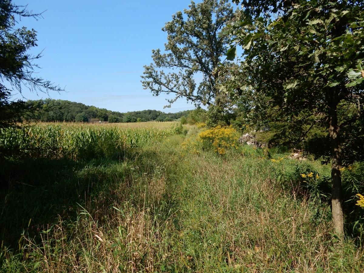 Mississippi Valley Conservancy touts land conservation agreement