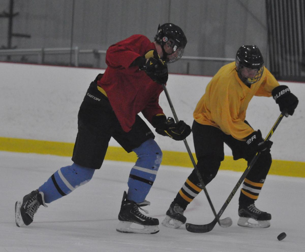 Pursuit of the puck