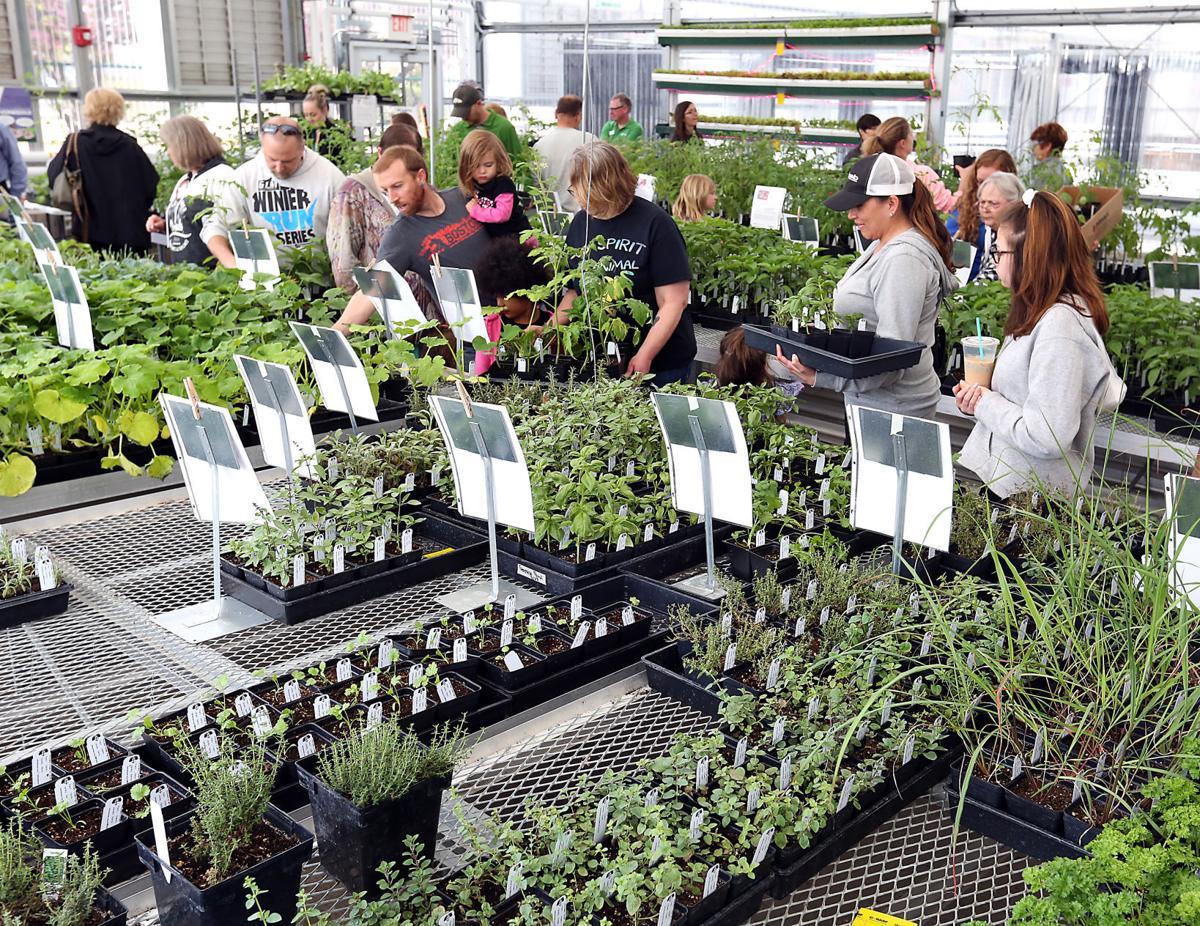 Plant Sale 2018