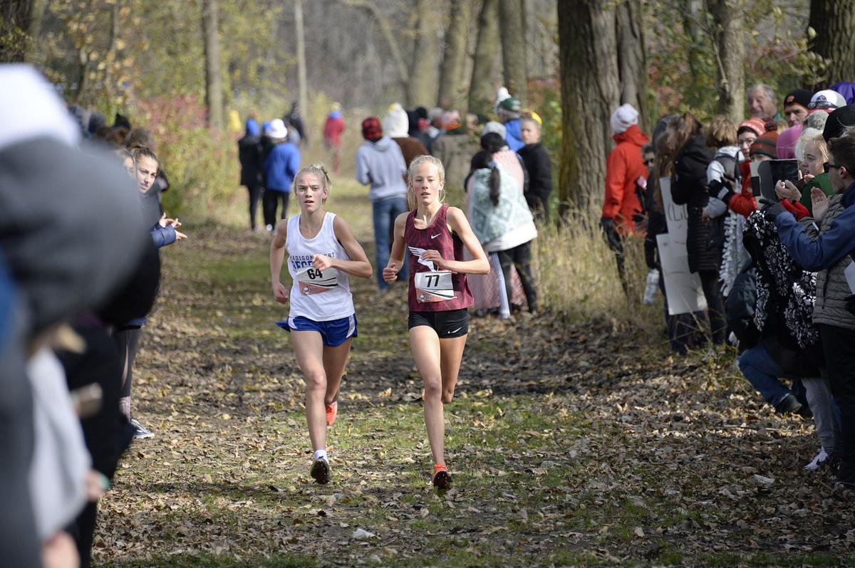 Wisconsin-WIAA-Division-1-cross-country-xc-sectionals-06-H4X0115-10262019154757