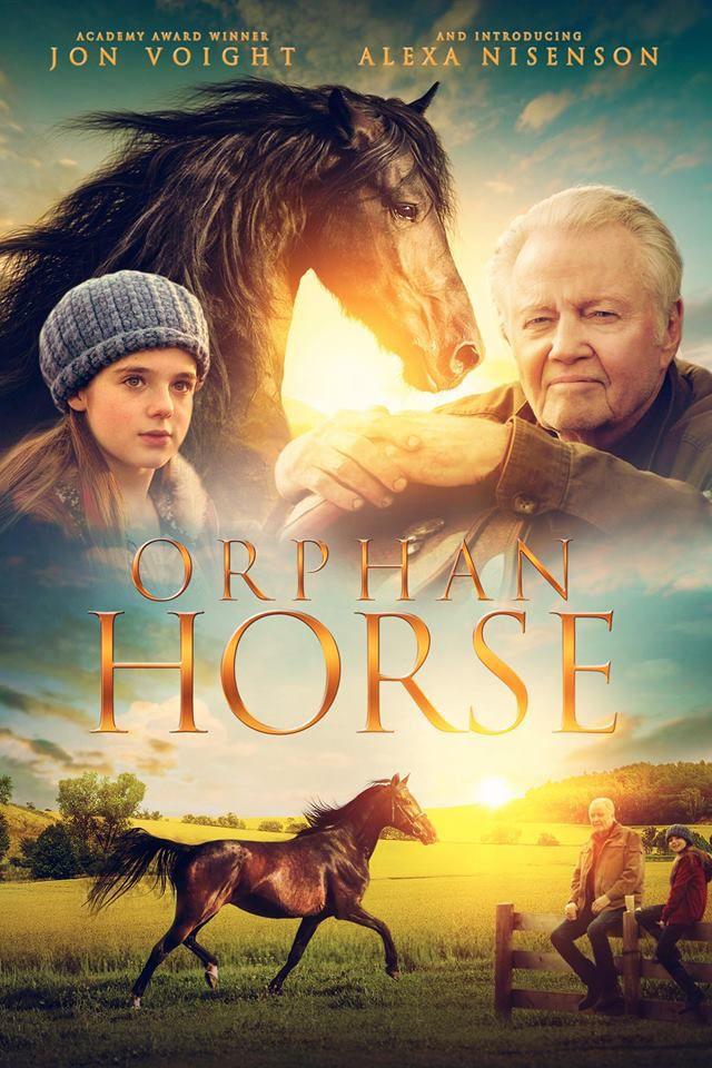 Movie written by Onalaska's Mark Hefti released on DVD ...