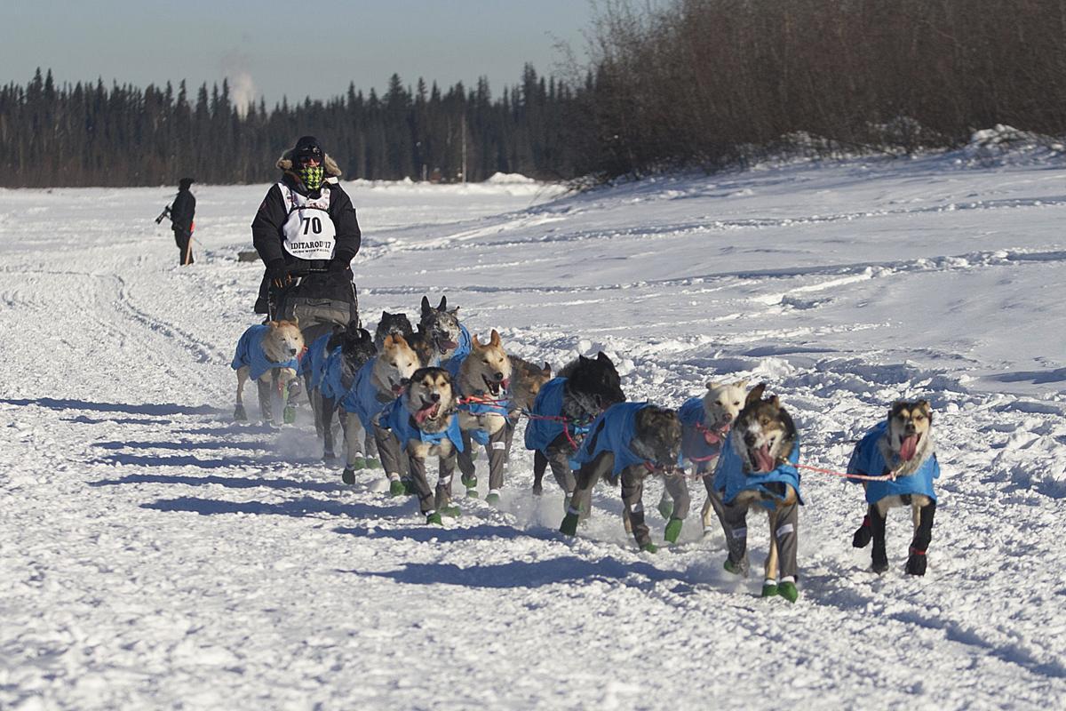 Howls, high-fives mark start of Iditarod race across ...
