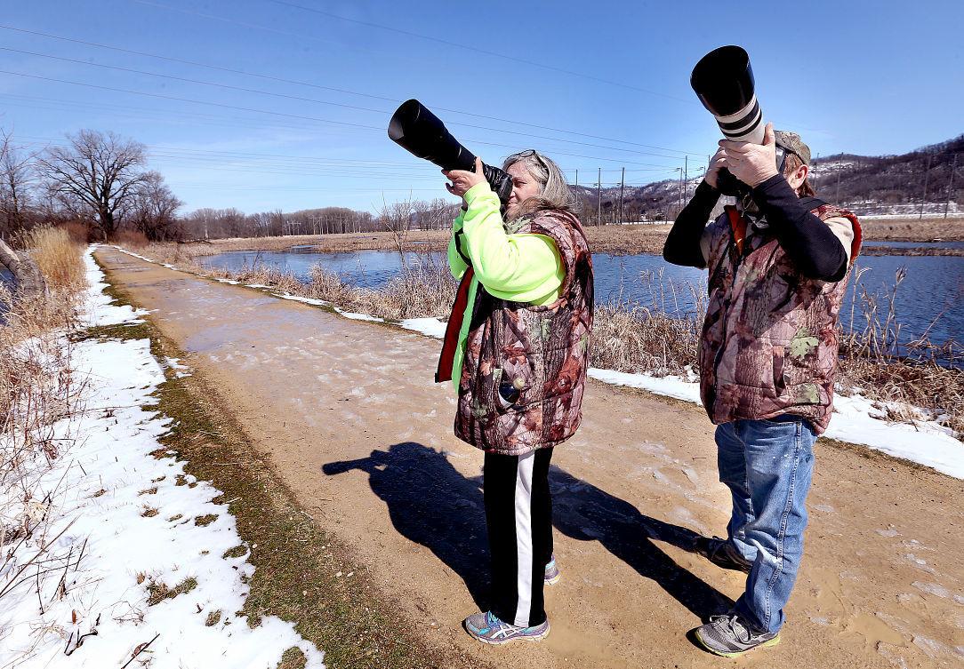 La Crosse River Marsh 1