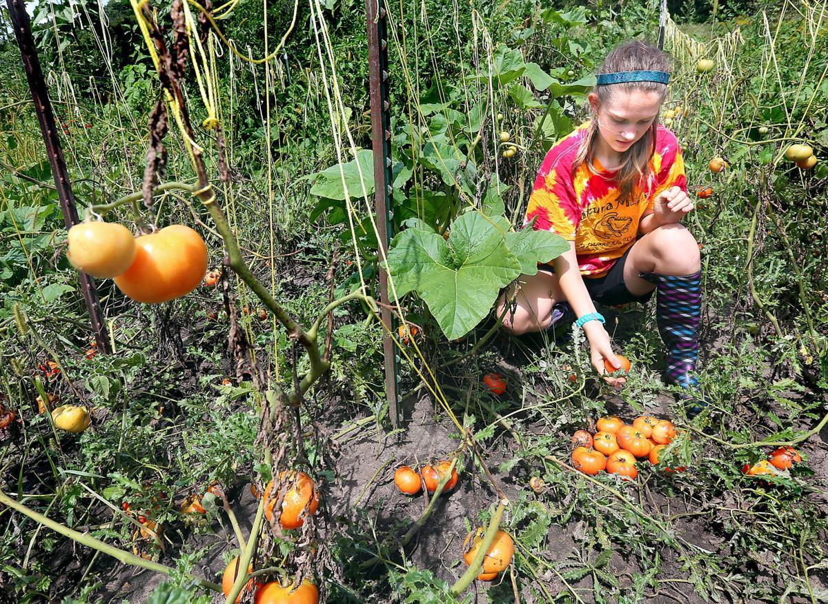 Deep Roots Community Farm