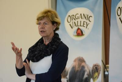 Tammy Baldwin speaking at Organic Valley
