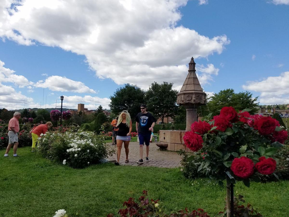 Duluth Rose Garden.jpg