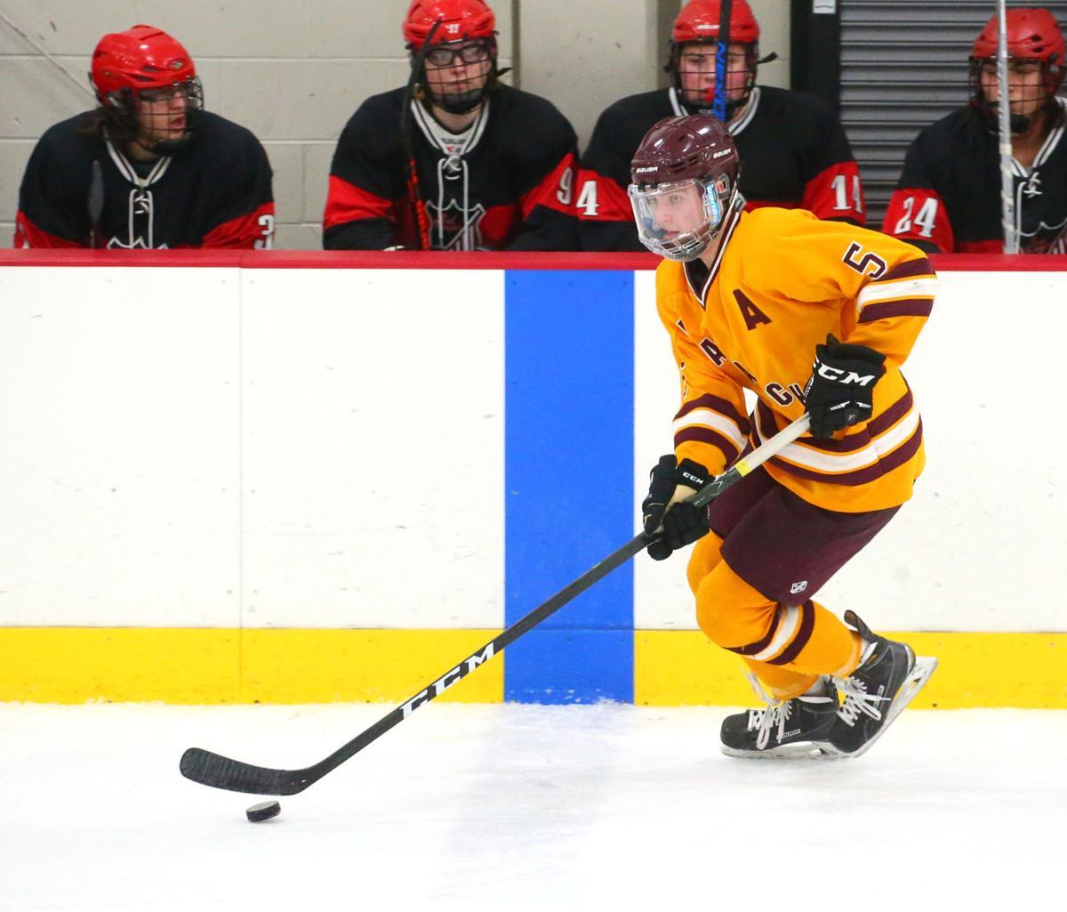 Avalanche La Crosse Hockey (SECONDARY)