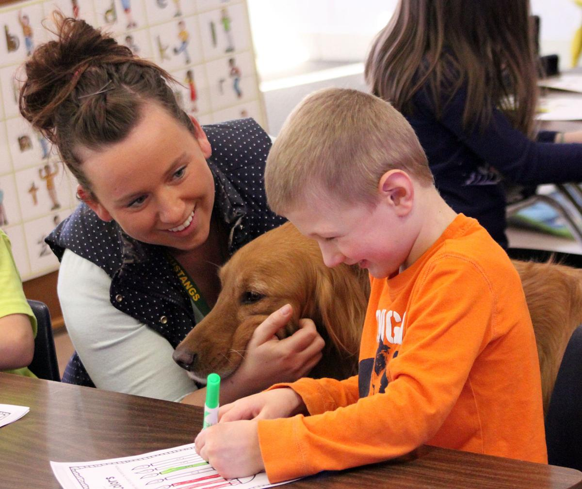 Melrose-Mindoro uses therapy dogs in the classroom