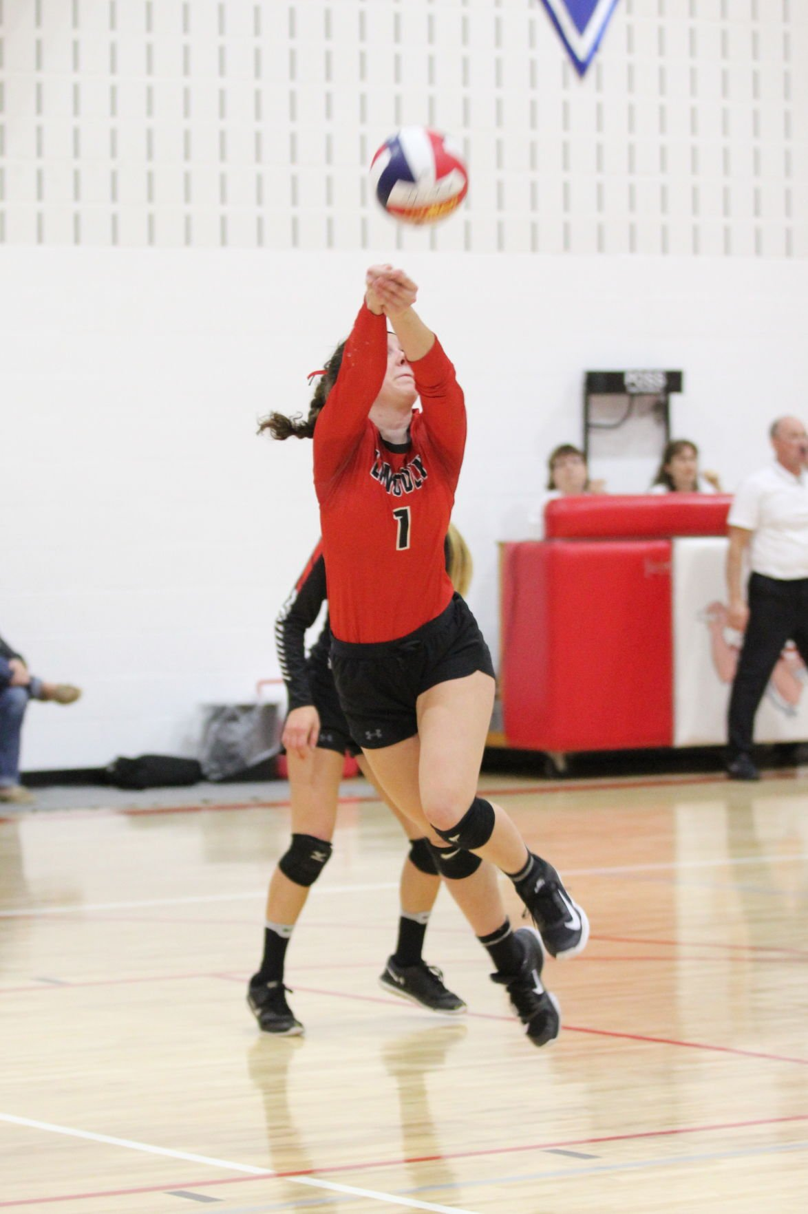 Hornets end volleyball season to Alma-Pepin