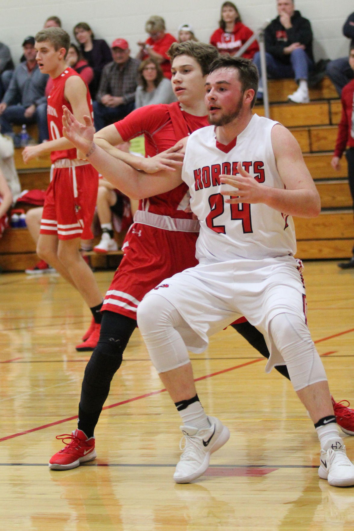 Hornets let Cardinals fly away, downed by Norse