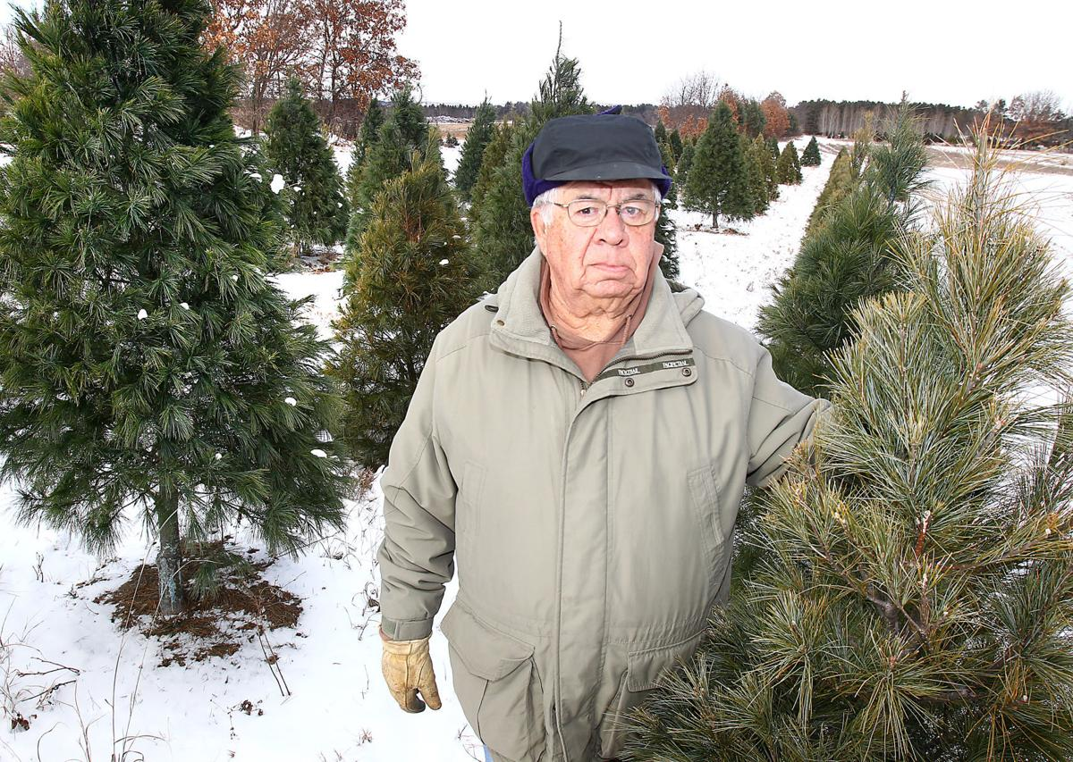 Cut Your Own Christmas Tree Wisconsin