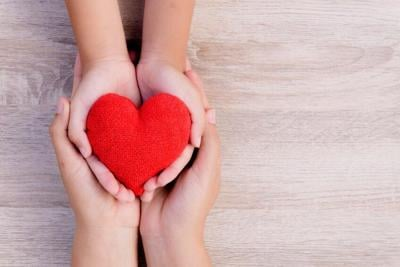 Health care, love, organ donation, family insurance and CSR concept. adult and child hands holding handmade red heart on wooden background.