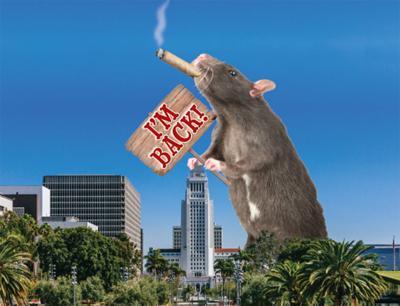 Return of the Leading Rat