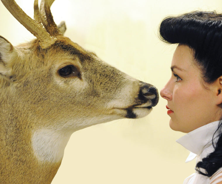 Strike a Pose: Taxidermy Classes Start in Downtown
