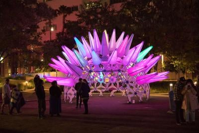 Grand Park Brings Back Its Light Display Winter Glow for Year Two