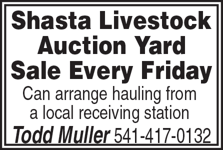 Shasta Livestock Auction - thru 2019