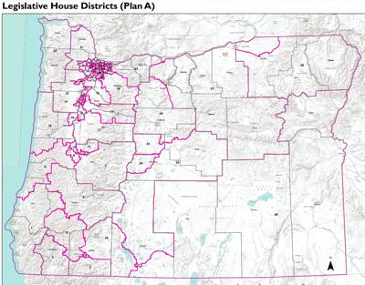County's legislative boundaries could change