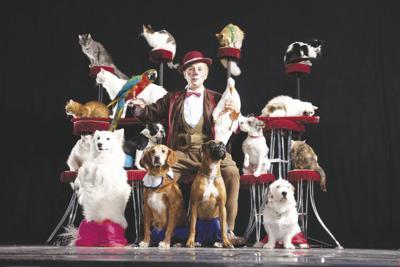 12-04 pet theater