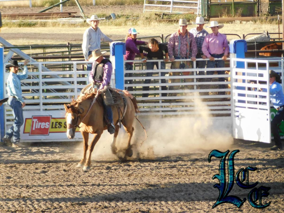 Ranch Rodeo - Bronc Riding 9-02-2016
