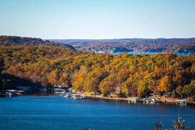 Fall Foliage At The Lake